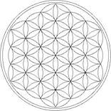 [img]http://www.soulsofdistortion.nl/images/geheim%20van%20heilige%20geometrie%20007.jpg[/img]